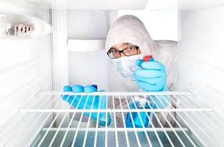 bacterie-frigo-maison