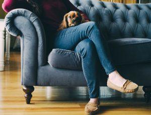 femme assise sur un canapé avec un chien sur les genoux